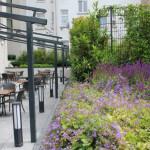 Grünanlagenpflege Star Inn Hotel in Frankfurt