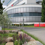 Grünanlagenpflege Frankfurt