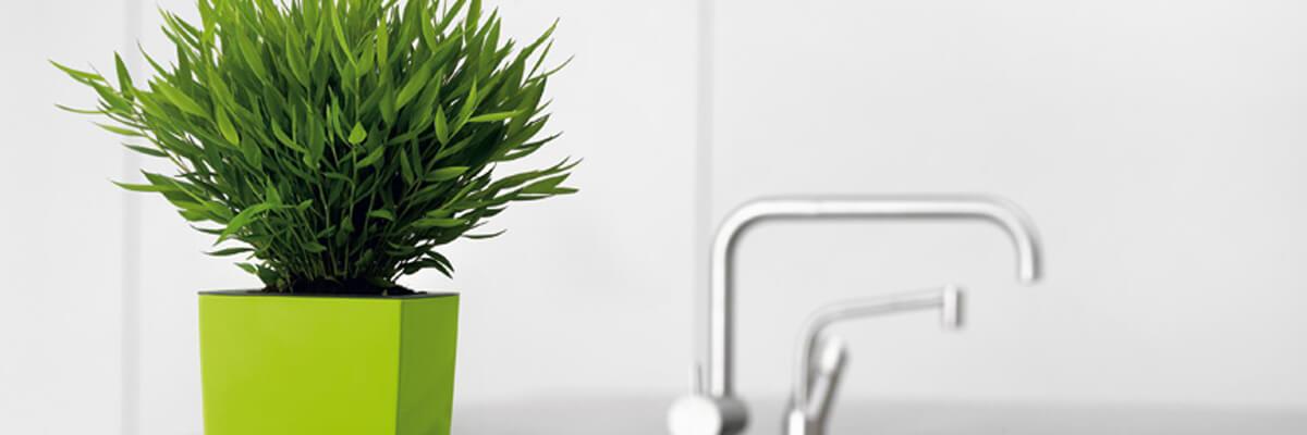 Pflanzgefäße, Pflanzkübel, Blumentöpfe | Grüner Leben